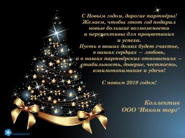 С новым 2009 годом!